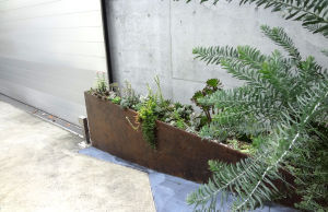 車庫前のステキナ風景